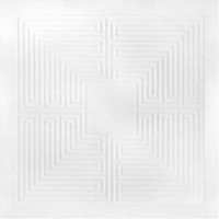 These New Puritans - Hidden [MMXX] - Vinyl Reissue