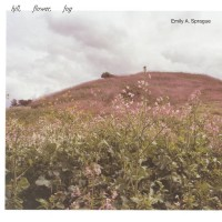 Image of Emily A Sprague - Hill, Flower, Fog