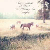 Image of Bill Callahan - Sometimes I Wish We Were An Eagle