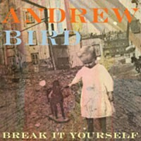 Image of Andrew Bird - Break It Yourself