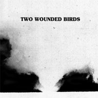 Image of Two Wounded Birds - Two Wounded Birds