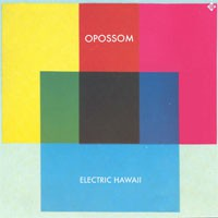 Image of Opossom - Electric Hawaii - Limited Triple 7