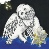 Image of Songs: Ohia - Magnolia Electic Co.- 10th Anniversary Deluxe Edition