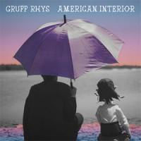 Image of Gruff Rhys - American Interior