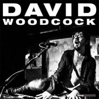 Image of David Woodcock - David Woodcock