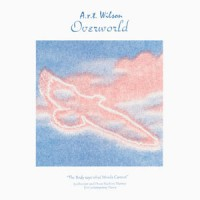Image of A.r.t. Wilson (Andras Fox) - Overworld