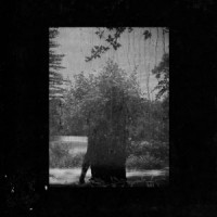 Image of Grouper - Ruins