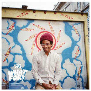 Image of Toro Y Moi - What For?