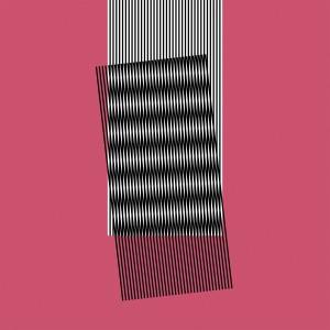 Image of Hot Chip - Why Make Sense?