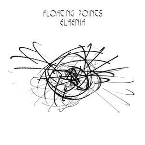 Image of Floating Points - Elaenia