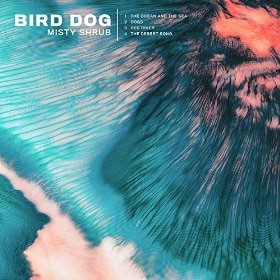 7889c41d4ce9 Reduced Cover of Misty Shrub by Bird Dog.