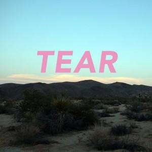 Image of Tear - Vinyl01