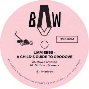 Image of Liam Ebbs - A Child's Guide To Groove