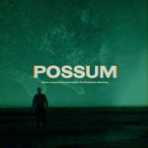 Image of The Radiophonic Workshop - Possum