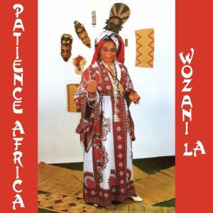 1a5af43e7 Cover of Wozani by Patience Africa.