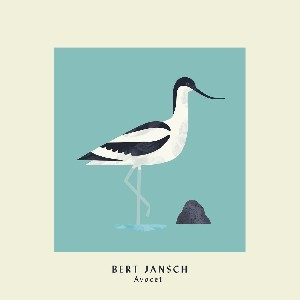 Image of Bert Jansch - Avocet (Expanded Anniversary Edition)