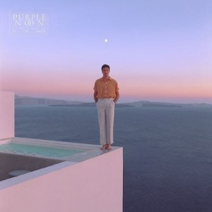 Image of Washed Out - Purple Noon