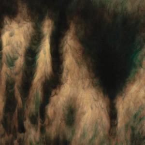 Image of William Basinski - Lamentations