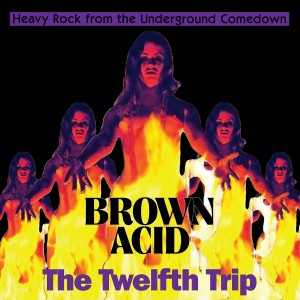 Various Artists - Brown Acid: The Twelfth Trip