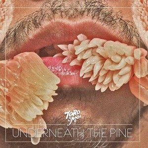 Image of Toro Y Moi - Underneath The Pine' - 10th Anniversary