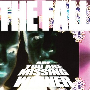 Image of The Fall - Are You Missing Winner - Reissue