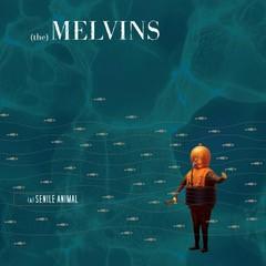 Image of Melvins - (A) Senile Animal