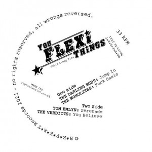 Image of Various Artists - You Flexi Thing Vol 8 (RSD21 EDITION)
