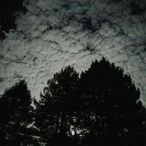 Image of Carlton Melton - Night Pillers (RSD21 EDITION)