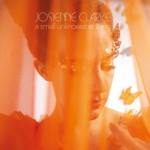 Image of Josienne Clarke - A Small Unknowable Thing