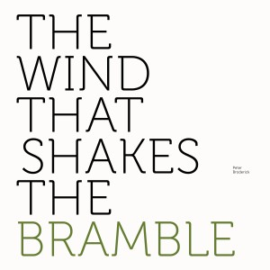 Image of Peter Broderick - The Wind That Shakes The Bramble