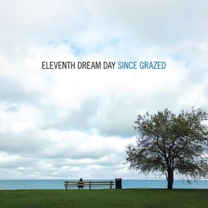 Image of Eleventh Dream Day - Since Grazed