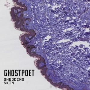 Image of Ghostpoet - Shedding Skin - Love Record Stores 2021 Edition