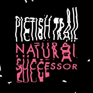 Pictish Trail - Natural Successor - Inc Django Django Mix
