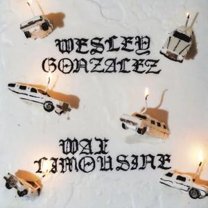 Image of Wesley Gonzalez - Wax Limousine
