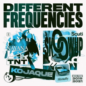 Image of Various Artists - Different Frequencies - National Album Day 2021 Edition