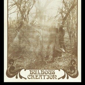Bulbous Creation - You Won't Remember Dying
