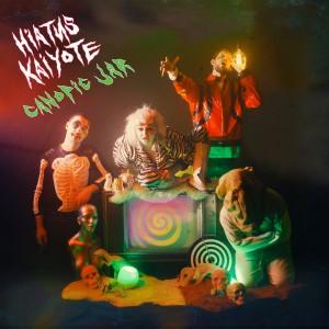 Image of Hiatus Kaiyote - Canopic Jar