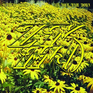 Let Your Hair Down - Waiting Room