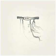 Image of Jose Gonzalez - In Our Nature