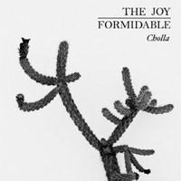 Image of Joy Formidable - Cholla