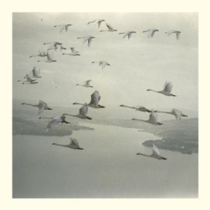 Image of Snow Ghosts - And The World Was Gone - Inc. Roly Porter / Calibre Remixes