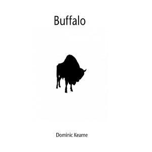 Image of Dominic Kearne - Buffalo