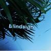 Jonny 5<br>Blindsign EP<br>Pleasure Wave