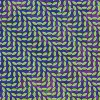 Animal Collective<br>Merriweather Post Pavilion<br>Domino Records