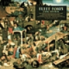 Image of Fleet Foxes - Fleet Foxes - 2CD Version