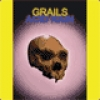 Image of Grails - Acid Rain
