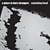 A Place To Bury Strangers<br>Exploding Head<br>Mute